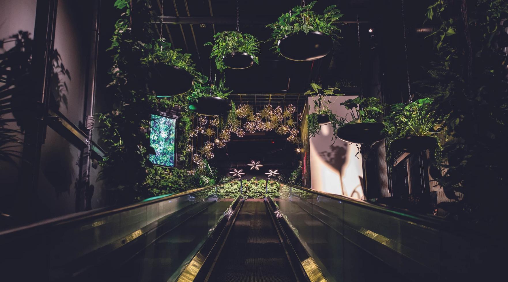 Floriworld, Niederlande